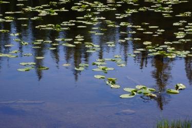 Butterfly Lake, Uinta Range